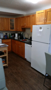 Quiet 1 bed apt downtown -Avail Jul -Aug 223 Ontario