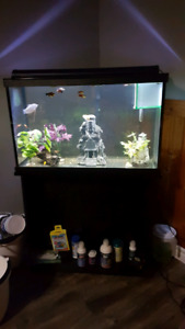 40 Gallon and All Accessories
