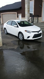 2016 Toyota Corolla LE Bck Up Cam,Heated Seats,Bluetooth,CHEAP!