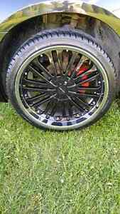 Rims in tires