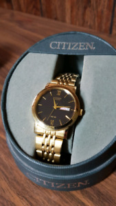 Citizen WR50 wristwatch