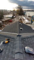 The Roofing Experts - Free Estimates