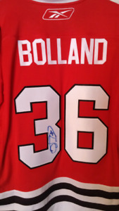 Chicago Blackhawks Dave Bolland signed jersey