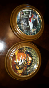 Set of 2 decorative cat plates with frames