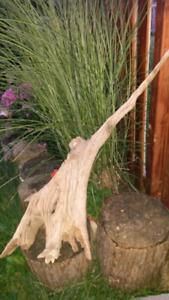 Milton - Large Drift wood