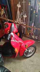 Honda spree REDUCED PRICE IS FIRM NEED TO SEEL QUICK