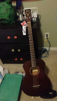 Acoustic-Electric Ibanez Bass Guitar $300