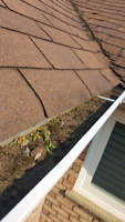 EAVESTROUGH CLEANING AND REPAIR PACKAGE FLAT RATE  $160.00