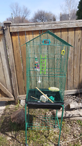 Large bird cage for sale! 34x 18x 13