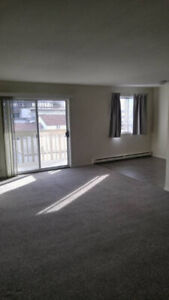 Bright Beautiful Two Bedroom Suite Near Hospital
