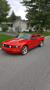 2006 Ford Mustang Convertible Nego!!!