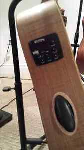 Riversong Special Edition Acoustic electric for sale London Ontario image 1