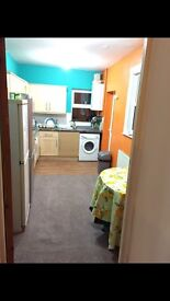Nice clean double room to rent in Clean house Forestgate