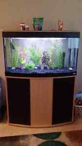 45 gallon bow front tank, stand & accessories