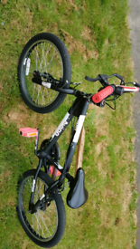 Avigo Spin BMX in great condition and fully working ready to ride away