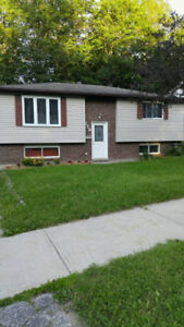 Brand new 2 Bdrm 1 bath Lower Level of house Dec 1