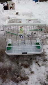 bird cage - cage oiseau