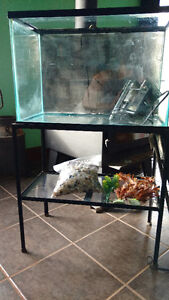 20 gallon fish tank with stand and filter