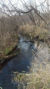 NOT MANY HOMES HAVE A BEAUTIFUL TRIBUTARY OF THE LYNN RIVER!