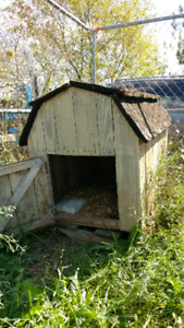 Dog/chicken house