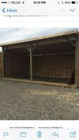Get your horse or cattle shed before fall