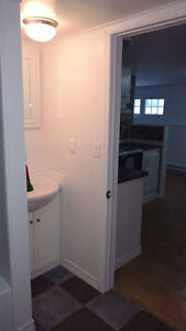 New 1 bedroom  basement suite  for  rent Available  Nov 1st!