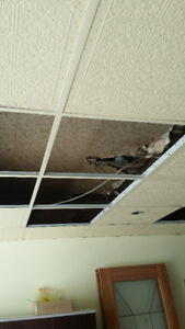 Drop Ceiling for free