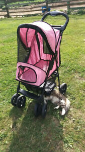 Pet Gear Happy Trails Pet Stroller for up to 30 lbs BEST OFFER