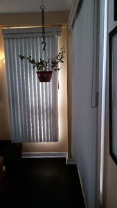 Vertical blinds with shear courtains