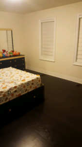 2 Bedrooms available for rent immediately.