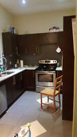 2 Bedroom Main(Newly Renovated), Ensuite Washer/Dryer