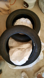 Pair of Michelin Defender tires