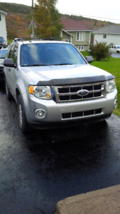 2009 Ford Escape XLT SUV, Crossover