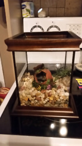Small 1 Gallon glass tank with dark real wood trim