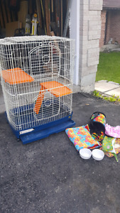 Ferret or small animal cage with some accessories