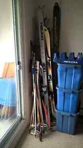 lots of pairs of downhill skis, various sizes