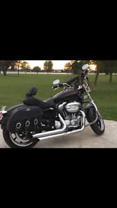 2011 Sportster 883  XL with warranty
