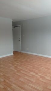 1Bedroom  Basement Apartment for rent