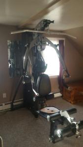 M3 INSPIRE  Home Gym and HORIZON Elite series Elliptical