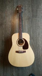 Norman b20 acoustic with hard shell case
