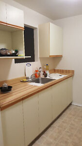 Room for rental in 2-Bed apartment Kingston Kingston Area image 5