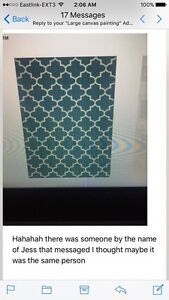 8x10 Teal rug **REDUCED** $100 OBO
