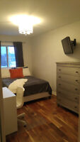 Upscale Homestay Avail for International Student- $1100, Vaughan