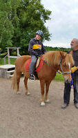 Volunteers needed for Therapeutic Horseback Riding