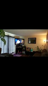 3 bedroom recently renovated upper level suite ready sept 1 st