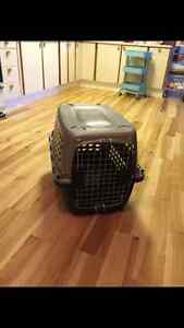 Dog crate/carrier for sale