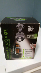 Remote controlled security light