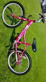 Townsend Crystal girls mountain bike, 6 gears ready to ride away. Cash
