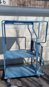 Cart with ladder on wheels