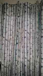 4 Panels - curtains - rustic urban barn birch trees